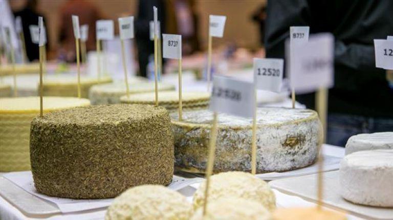 Los mejores quesos de España se reúnen para competir y para conquistar todos los paladares