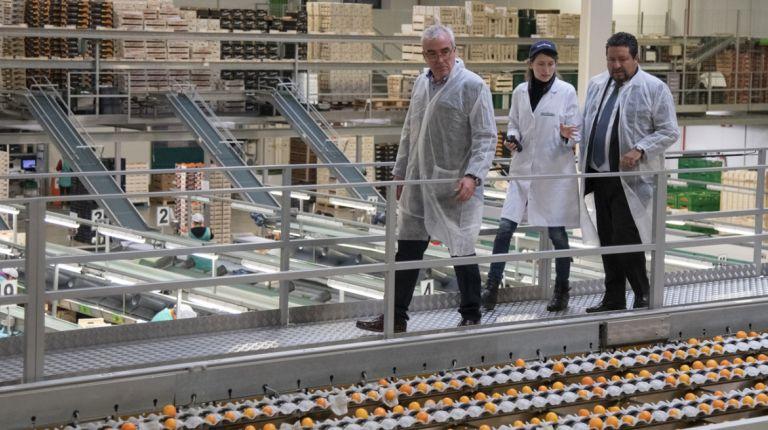 Impulso al consumo de productos agroalimentariosen Castellón