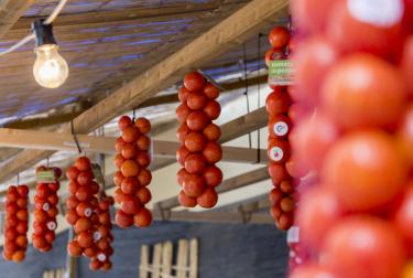 La Feria de la Tomata de Penjar nos muestra lo mejor de este producto y las formas de sacarle provecho